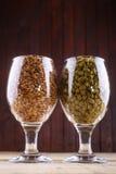 Malt and hops in glasses. Glasses full of malt and hops over a wooden backgound Stock Image