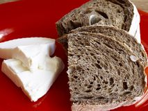 Malt rye bread with white cheese. On red plate Royalty Free Stock Photography