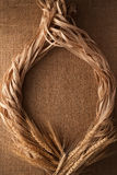Malt still life rope flax frame sackcloth background. Rustic flat lay frame border Royalty Free Stock Images