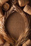 Malt still life rope flax frame sackcloth background. Rustic flat lay frame border Royalty Free Stock Photo