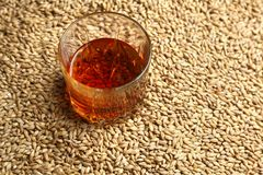 Malt and whiskey Royalty Free Stock Photography