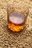 Malt and whiskey royalty free stock photo