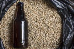 Malta ambarina con la botella, cerveza que elabora los ingredientes Foto de archivo libre de regalías