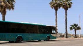 Malta autobus zdjęcie wideo