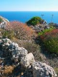 Malta buske arkivbild