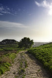 Malta Countryside Stock Images