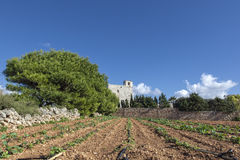 Malta Countryside Royalty Free Stock Images