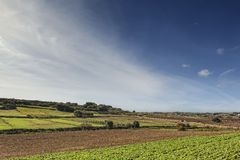 Malta Countryside. Typical agricultural landscape in Malta, with beautiful rich red soil and terraced fields Royalty Free Stock Image