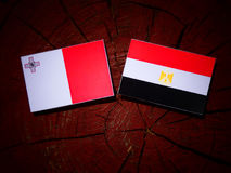 Maltańczyk flaga z egipcjanin flaga na drzewnym fiszorku Zdjęcie Stock