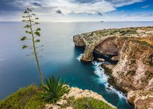 Malta - The famous arch of Blue Grotto cliffs with green leaves. And tree Stock Image