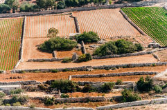 Malta - fields and meadows. Malta - countryside from aircraft, fields and meadows Stock Images