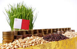 Malta flag waving with stack of money coins and piles of wheat. And rice seeds Royalty Free Stock Images