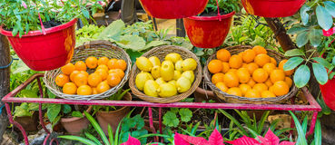 Malta - freh fruits at mdina. Fresh and tasty fruits - found on a market at mdina Stock Photography