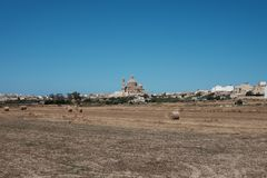 Malta is the best destination. Malta 2018 - Gozo island landscape with agricultural field and church Stock Photos