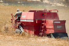 Harvest season Royalty Free Stock Image