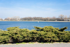 Malta lake. Small bushes in front of the Malta lake in Poznan, Poland Royalty Free Stock Images