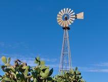 malta medelhavs- windmill royaltyfria bilder