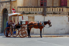 Malta. A traditional horse cart. Royalty Free Stock Images