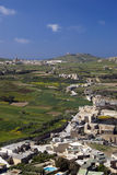 Malta view. View of green fields and white houses on Malta in springtime Stock Photos