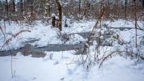 Maltakva park in winter time, Poti, Georgia.  Stock Photo