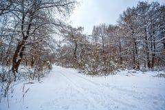 Maltakva park in winter time, Poti, Georgia.  Stock Images