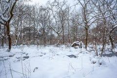 Maltakva park in winter time, Poti, Georgia.  Stock Image