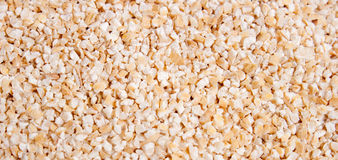 Malted barley food background Stock Image