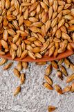 Malted grain closeup. Mixed varieties of malted grain on a gray background. close-up. top view. Flat lay. series of photos. space stock photo