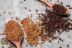 Malted grains in a wooden spoon closeup. Mixed varieties of malted grain on a gray background. close-up. top view. Flat lay. series of photos. space stock images