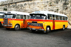Maltese buses Royalty Free Stock Images