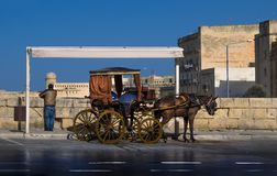 The Maltese chariot. The carriage waits. Malta. Ride on a wagon in the capital of Malta, the old city of Valletta Royalty Free Stock Images