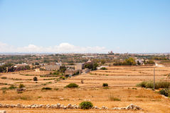 Maltese countryside. Dry Maltese countryside in summer time Royalty Free Stock Photos