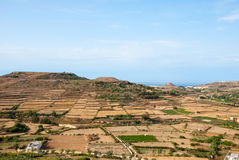 Maltese countryside. Dry Maltese countryside in summer time Royalty Free Stock Photography