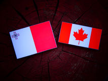 Maltese flag with Canadian flag on a tree stump isolated Royalty Free Stock Photo