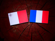 Maltese flag with French flag on a tree stump isolated. Maltese flag with French flag on a tree stump Royalty Free Stock Photo