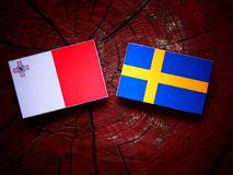 Maltese flag with Swedish flag on a tree stump. Maltese flag with Swedish flag on a tree stump Stock Images