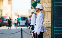 Maltese guardian in a street Royalty Free Stock Images