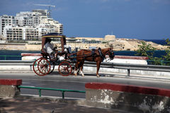 Maltese Karozzin carriage overlooking Fort Tigne, Malta. A Maltese Karozzin parked by the bay overlooking Fort Tigne,Sliema, Malta Stock Photo