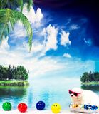 Maltese relaxing in the tropics. White Maltese dog posing at tropical setting on floaty with smily face beach balls Stock Photos