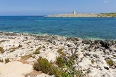 Maltesisk kustlinje med watchtoweren Arkivbilder