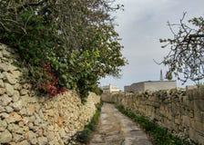 Maltesiskt bygdlandskap på söderna av Malta som är medelhavs- arkivbilder
