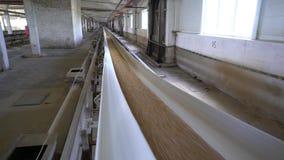 Malting εγκαταστάσεις Σιτάρια κριθαριού που μεταφέρονται στο μεταφορέα απόθεμα βίντεο