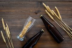 Malting barley. Grains and ears on dark wooden background top view copyspace. Malting barley. Grains and ears on dark wooden background top view Royalty Free Stock Photography