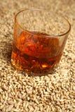 Malto e whiskey Immagini Stock