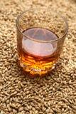Malto e whiskey Fotografia Stock Libera da Diritti