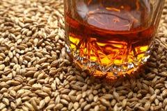 Malto e whiskey Immagine Stock Libera da Diritti