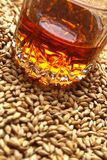 Malto e whiskey Fotografia Stock