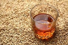 Malto e whiskey Immagine Stock