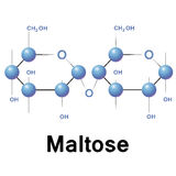 Maltose stock illustration