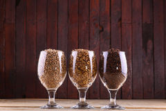 Malts in glasses Stock Images